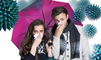 Jak podpořit imunitu pomocí potravin s protizánětlivými účinky